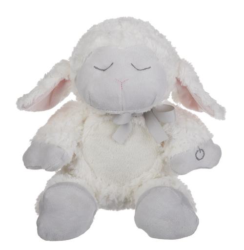 Lamb Belly Bright