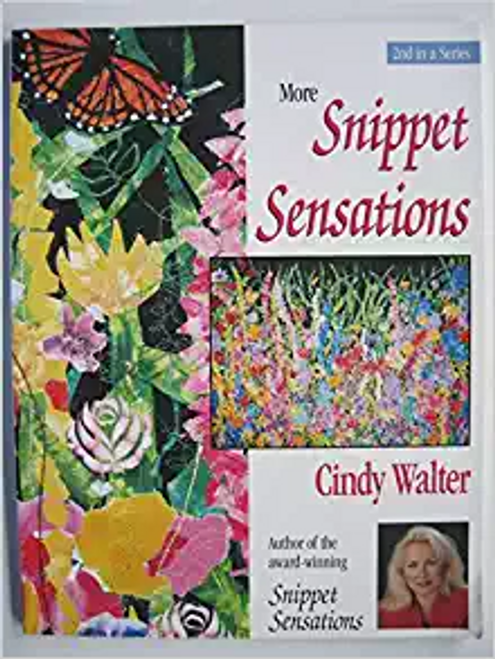 More Snippet Sensations by Cindy Walter