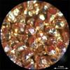 Magnified image of copper granules CU23HP