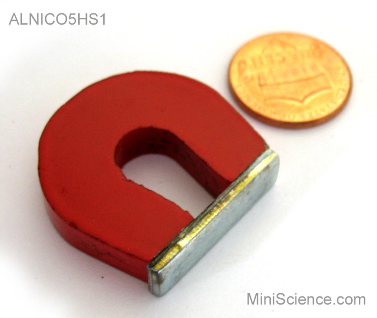 ALNICO horseshoe magnet, 1-inch, painted