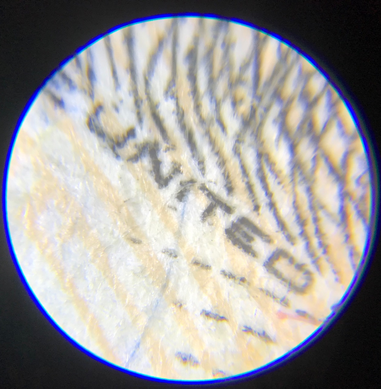 United States $50 bill being inspected using Pocket Microscope Zoom 60X - 100X
