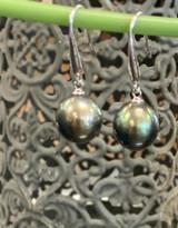 Tahitian Black Pearl Earrings, Hook
