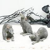 Comical Rats