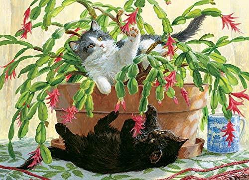 Cactus Kitties
