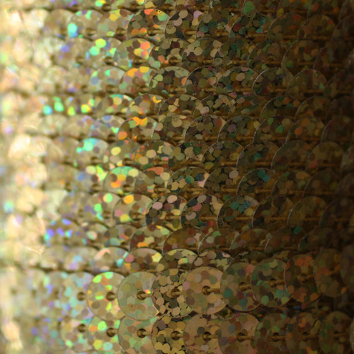 Sequin Trim 6mm Gold Hologram Glitter Sparkle Metallic