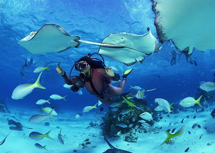 PADI Private Scuba Diving Lessons