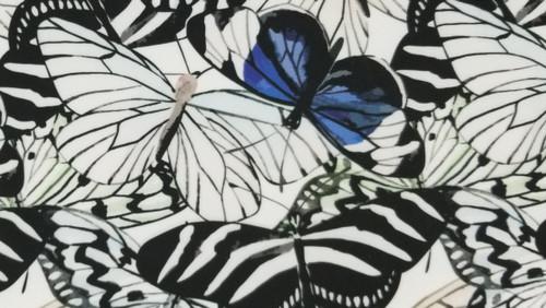 Butterfly - 44
