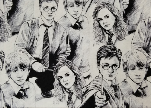 Harry Potter on White