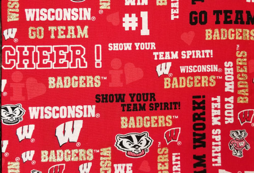 Wisconsin Badgers - red with glitter gold go team