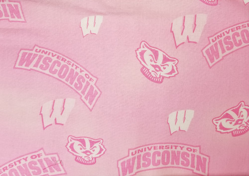 Wisconsin Badgers - pink Bucky