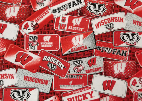 Wisconsin Badgers - license plates, #1 fan