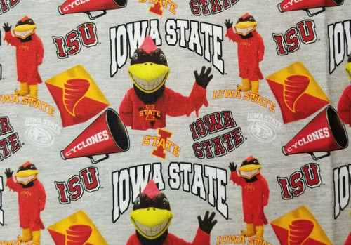 Iowa State - grey cyclone