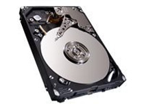 Seagate Enterprise Performance 10K HDD ST900MM0006 - hard drive - 900 GB - SAS 6Gb/s (ST900MM0006) - RECERTIFIED