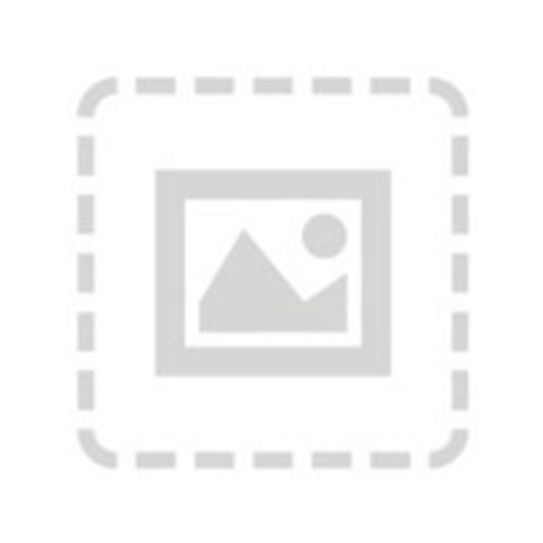Cisco Data Center Network Manager SAN Enterprise License - license - 1 swit