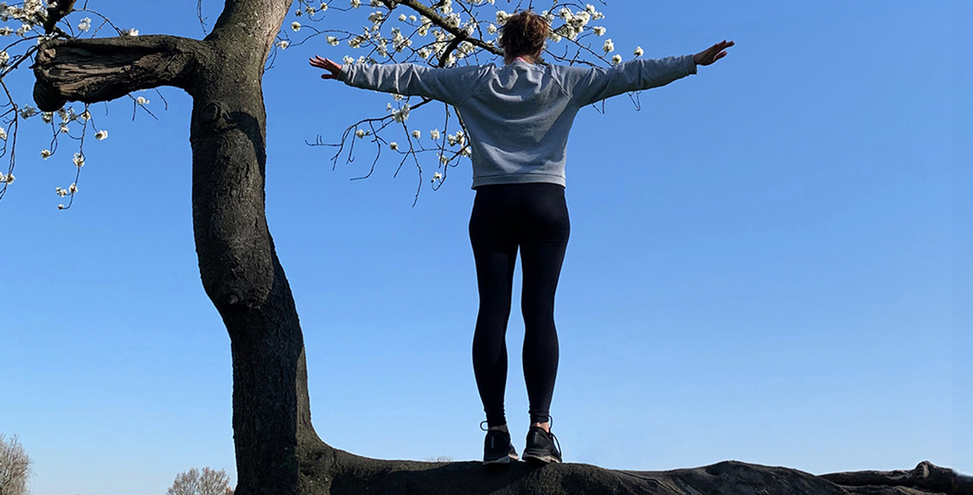 The Beauty of Emotional Balance