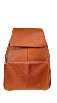 233 Backpack
