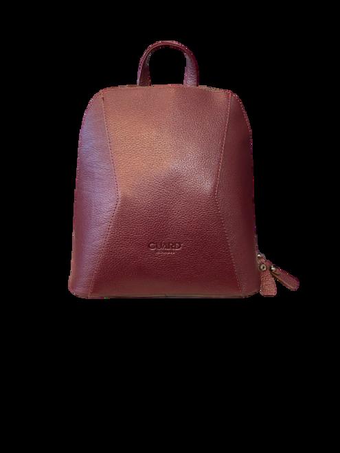 704 Burgundy Backpack and handbag