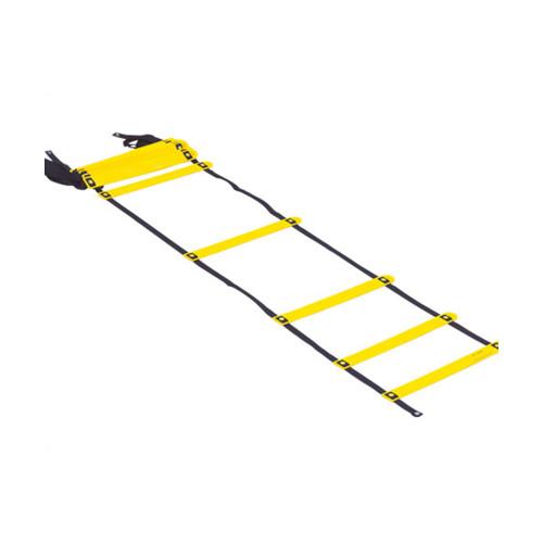 Smart Modular Acceleration Ladder