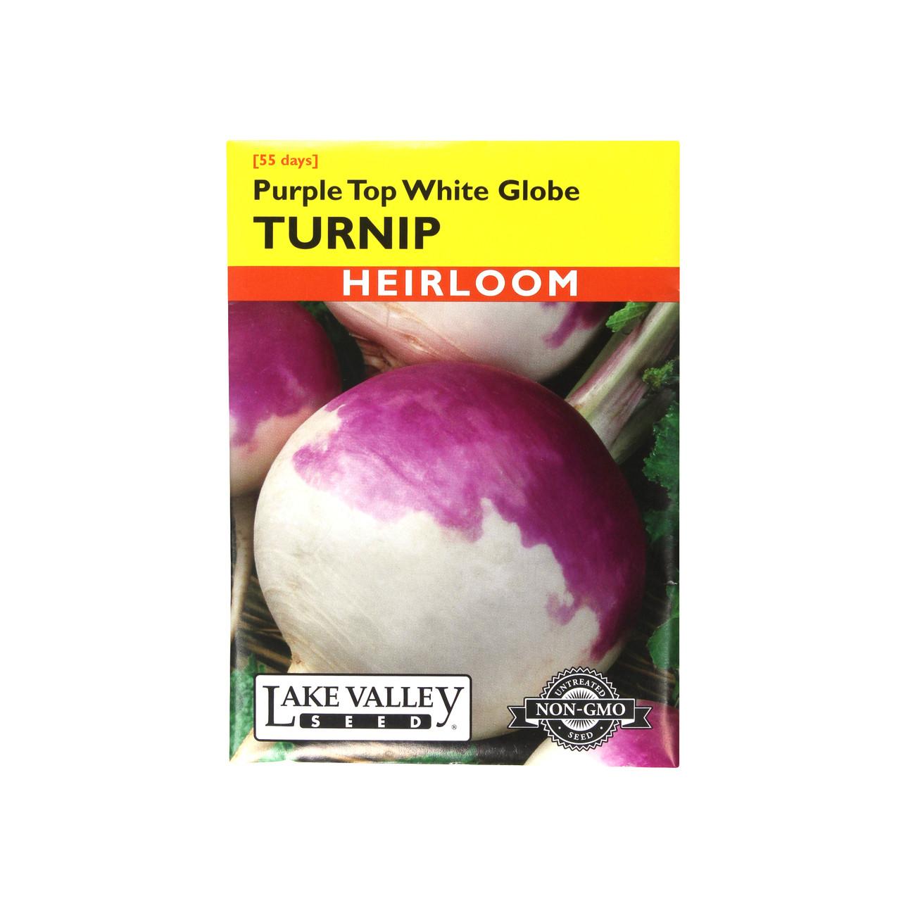 500//1500 Seeds Swede Purple Dark Shallow Spots Flesh Yellow Swede