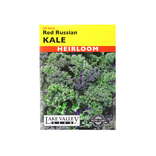 Kale Red Russian (Ragged Jack) Heirloom Seeds