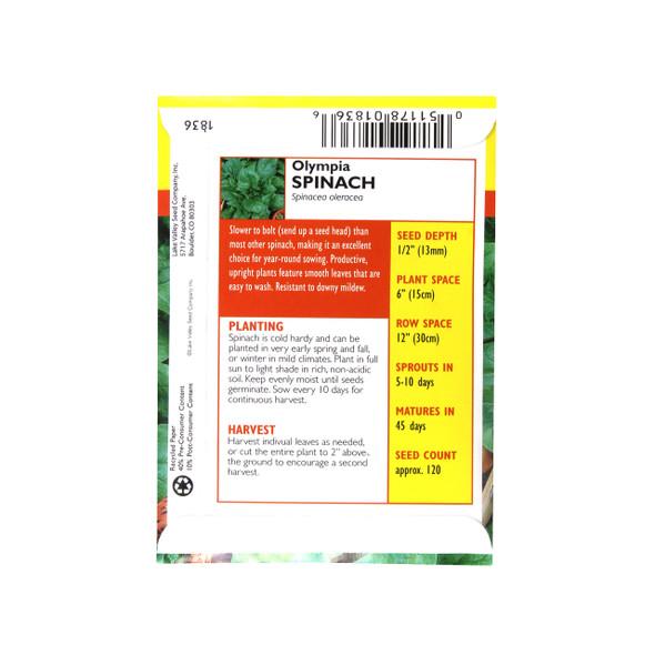 Spinach Olympia Hybrid