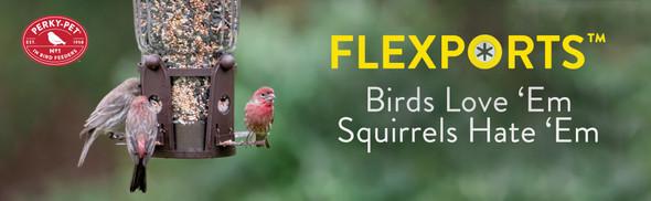 Perky-Pet (#334) Squirrel-Be-Gone Max Bird Feeder
