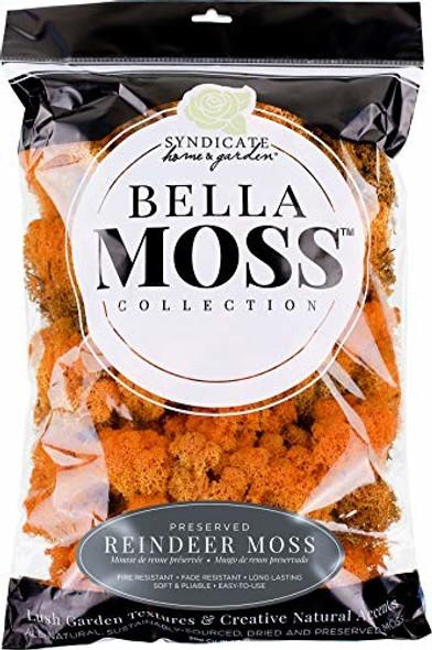 Bella Moss 1407101083 Reindeer Bag Moss, Autumn