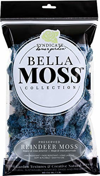 Bella Moss 1406121085 Preserved Reindeer Moss, Lavender Blue, 80 cu in