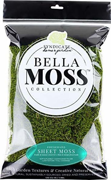 Bella Moss 140112070 Preserved Sheet Moss, Green, 120 cu in