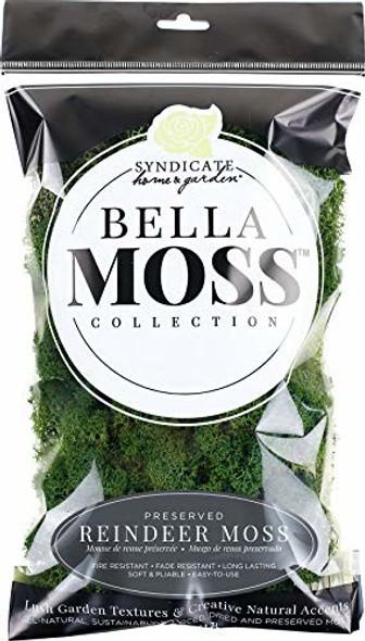 Bella Moss 1406121081 Preserved Reindeer Moss, Dark Green, 80 cu in.