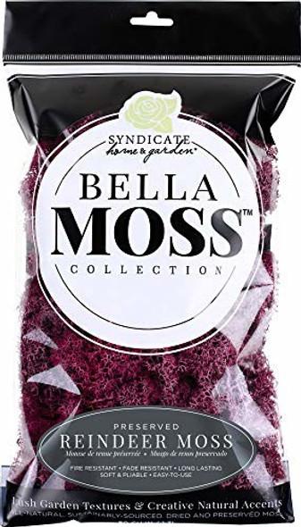 Bella Moss 1406121084 Preserved Reindeer Moss, Sangria, 80 cu in.
