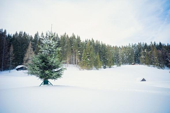 Tree Nest (#218612) Medium Red Geometric Christmas Tree Stand