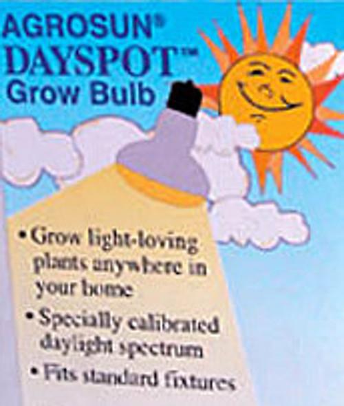 Dayspot Replacement Bulb