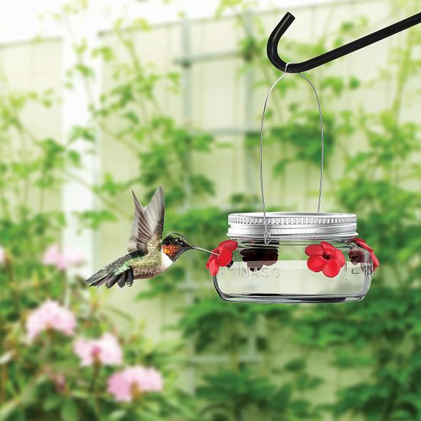 Nature's Way Bird Products (#MJF1) Mason Jar Hummingbird Dish Feeder