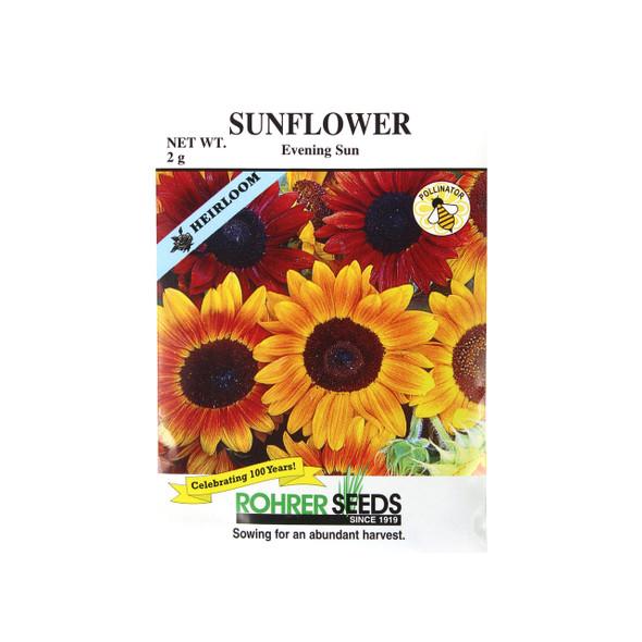 Rohrer Seeds Evening Sun Sunflower