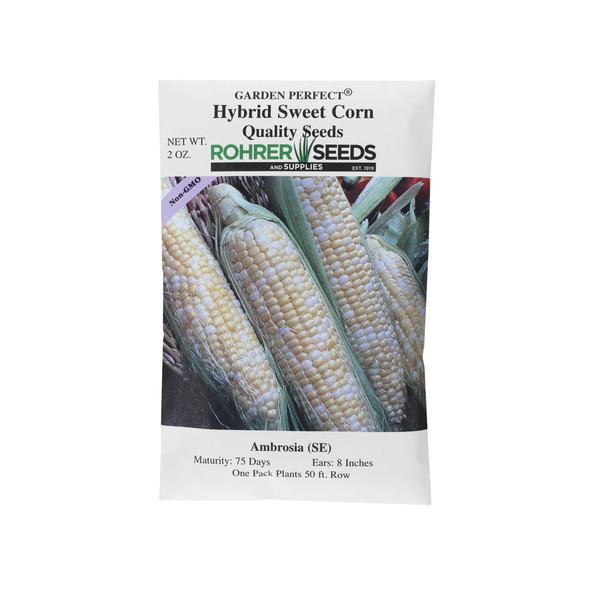 Rohrer Seeds Ambrosia (SE) Hybrid Sweet Corn