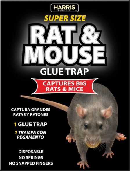 Harris Super-Size Rat and Mouse Glue Trap with Lure