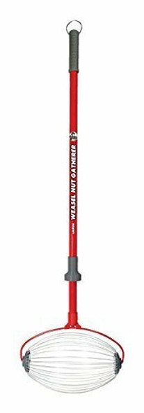 """Garden Weasel 95404 Large Nut Gatherer, Picks up Walnuts, Small Fruits, Sweet Gum Balls, and Magnolia Seeds from 1.5"""" to 3"""" In Size, Weather and Rust Resistant,"""