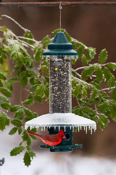 Weather Guard for Squirrel Buster Plus Bird Feeder (FEEDER NOT INCLUDED)