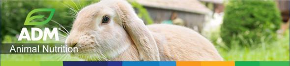 ADM Animal Nutrition Pen Pals Rabbit Mini Pellet, 25 lb bag