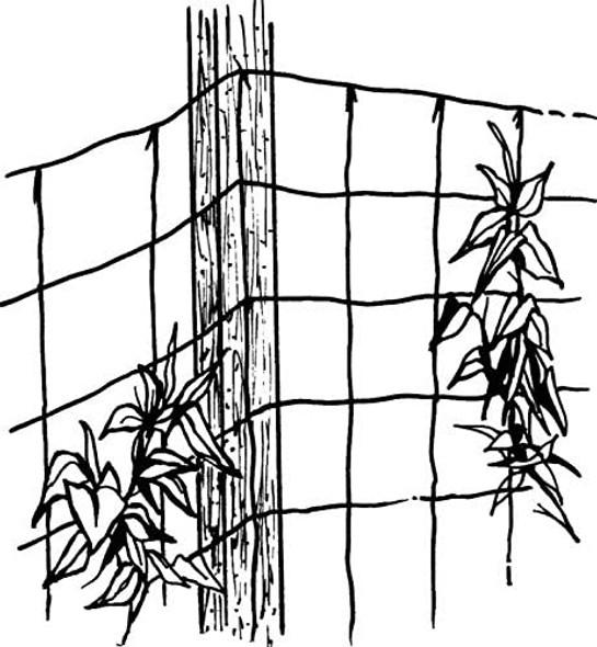 Luster Leaf RapiClip Juke Trellis Netting,  Natural - 5' x 10'