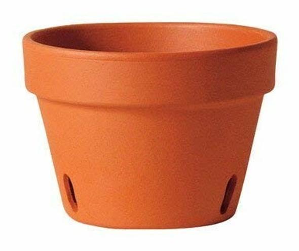 """DEROMA M9030PZ Terra Cotta Orchid Pot, 8.3"""""""