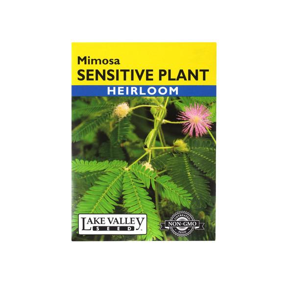Lake Valley Seed Sensitive Plant Mimosa Heirloom