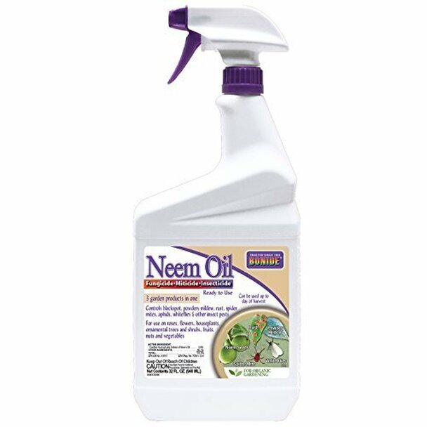 bonide-neem-oil.jpg