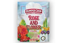 bumper-crop-rose.jpg