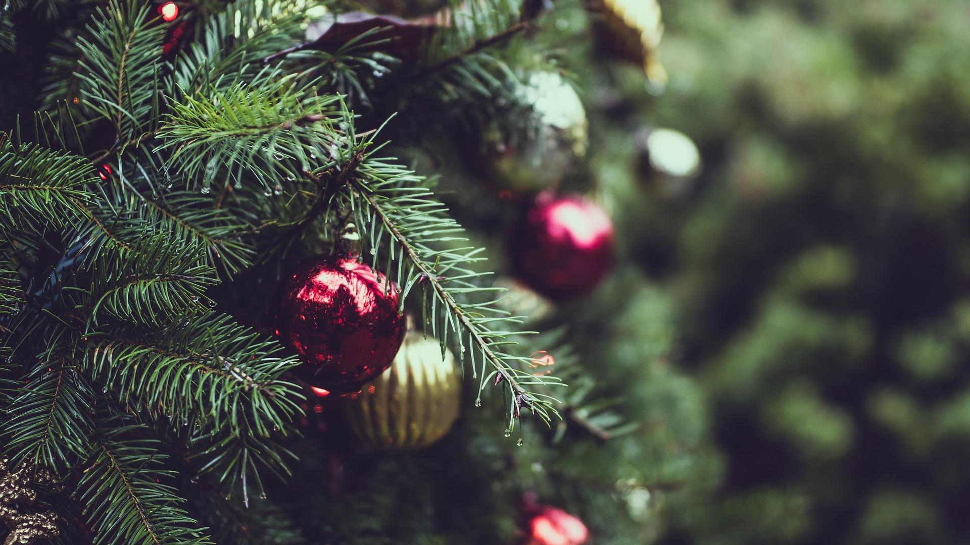 christmas-2595975-1920.jpg