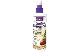tomato-blossom-set-article-photo.jpg