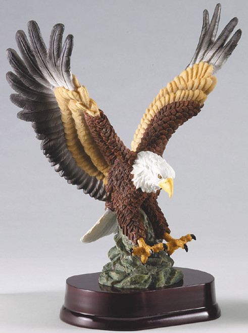Full Color Eagle Landing