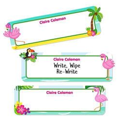 Large Rectangle Write-On Name Labels