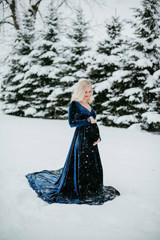 Sarah Velvet Dress